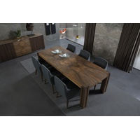 Amon Rectangular Fixed Top Dining Table
